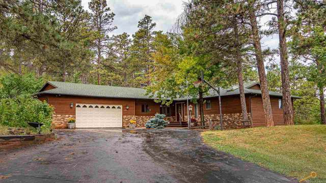 4401 Carriage Hills Dr, Rapid City, SD 57702 (MLS #146318) :: Dupont Real Estate Inc.