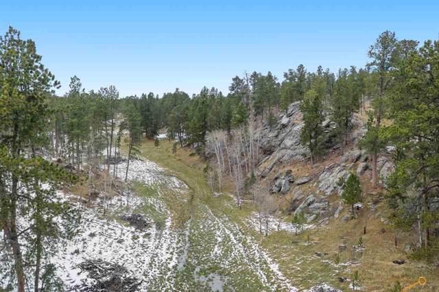 TBD Custer Limestone Rd, Custer, SD 57730 (MLS #146494) :: Heidrich Real Estate Team