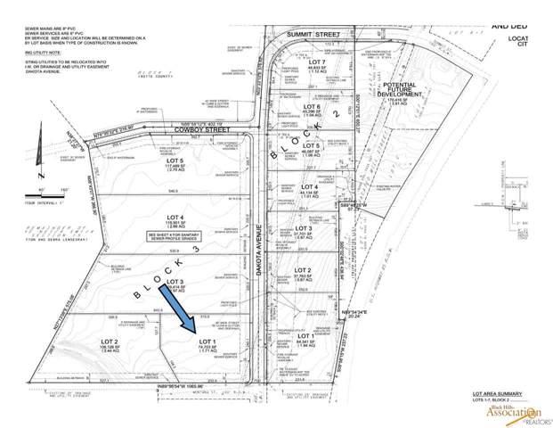TBD Dakota, Belle Fourche, SD 57717 (MLS #146590) :: Christians Team Real Estate, Inc.