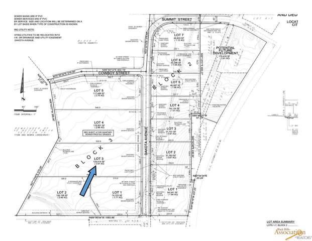 TBD Dakota, Belle Fourche, SD 57717 (MLS #146591) :: Christians Team Real Estate, Inc.