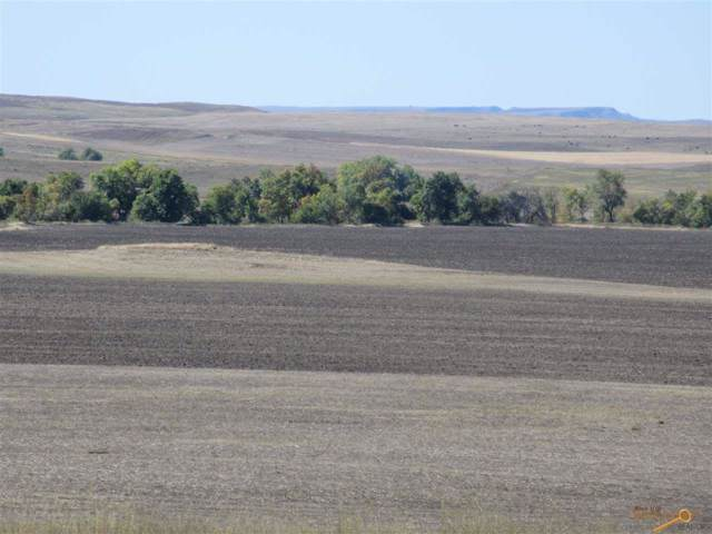 Other, Orlrichs, SD 57763 (MLS #146682) :: Dupont Real Estate Inc.