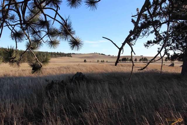 Tr. 13A Danby Park Trail, Custer, SD 57730 (MLS #146768) :: Heidrich Real Estate Team