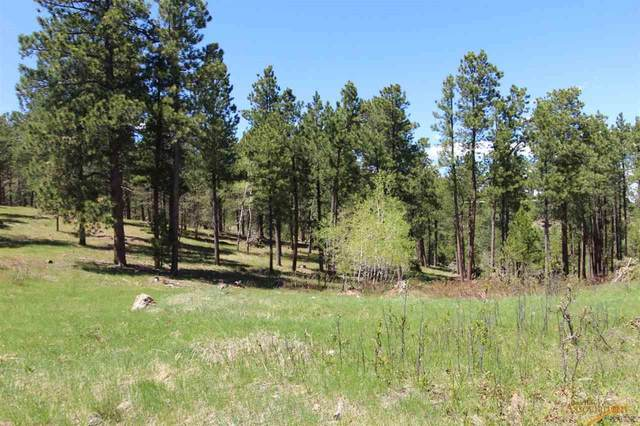 TBD Baneberry Lp, Deadwood, SD 57732 (MLS #146810) :: Christians Team Real Estate, Inc.
