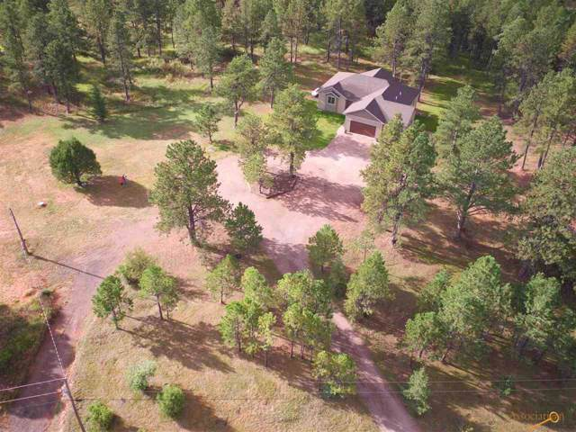 13835 Knotty Pine Ln, Rapid City, SD 57702 (MLS #146879) :: Heidrich Real Estate Team