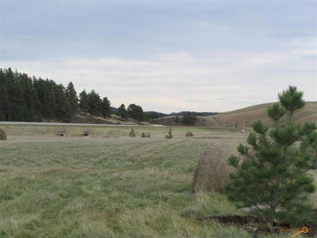 TBD Deerfield Rd, Hill City, SD 57745 (MLS #147076) :: Christians Team Real Estate, Inc.