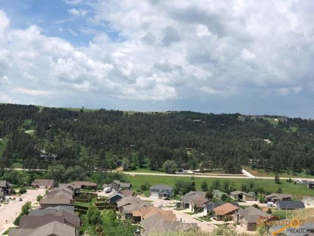5930 Overview Ln, Rapid City, SD 57702 (MLS #147268) :: Christians Team Real Estate, Inc.