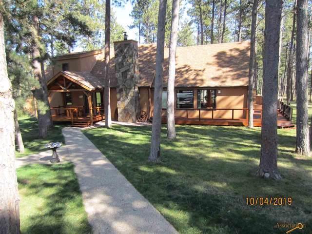 10808 N High Meadows Dr, Black Hawk, SD 57718 (MLS #147277) :: Christians Team Real Estate, Inc.