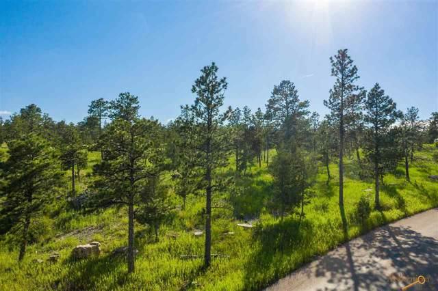 TBD Pine Hills Dr, Rapid City, SD 57702 (MLS #147284) :: Christians Team Real Estate, Inc.