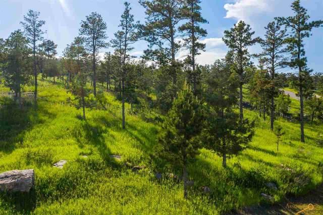 TBD Pine Hills Dr, Rapid City, SD 57702 (MLS #147285) :: Christians Team Real Estate, Inc.