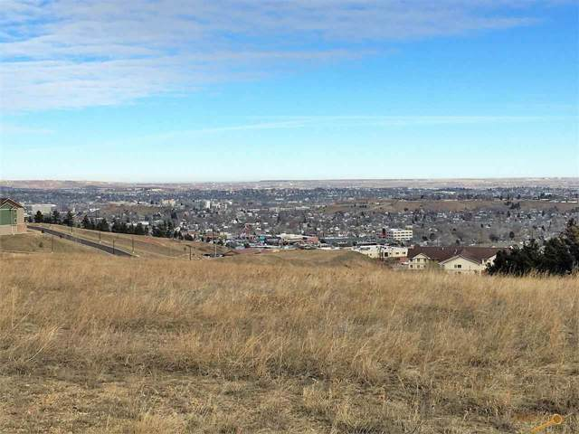 3048 Tower Rd, Rapid City, SD 57701 (MLS #147355) :: Black Hills SD Realty