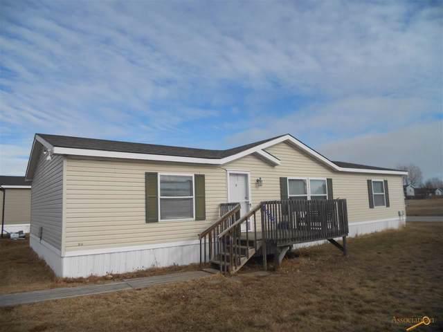 4448 Circlewood Dr, Rapid City, SD 57703 (MLS #147402) :: Dupont Real Estate Inc.