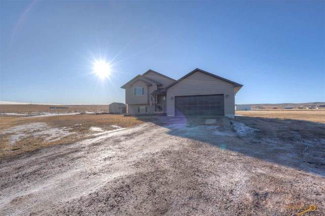 14711 Horseshoe Rd, Piedmont, SD 57769 (MLS #147446) :: VIP Properties