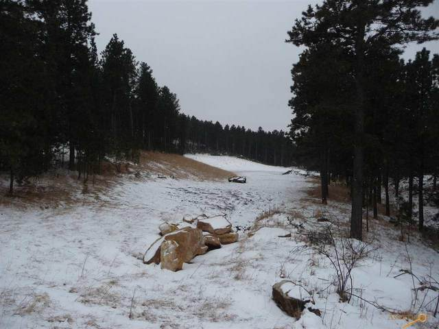 TBD Pine Grove Rd, Rapid City, SD 57702 (MLS #147697) :: Dupont Real Estate Inc.