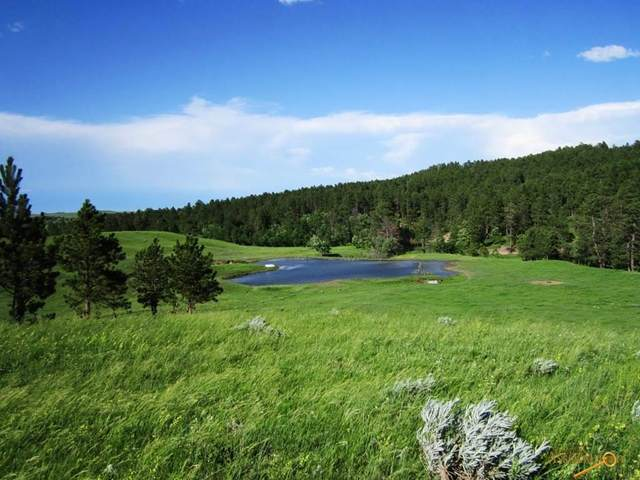 20867 Picardi Ranch Rd, Sturgis, SD 57785 (MLS #147776) :: Dupont Real Estate Inc.