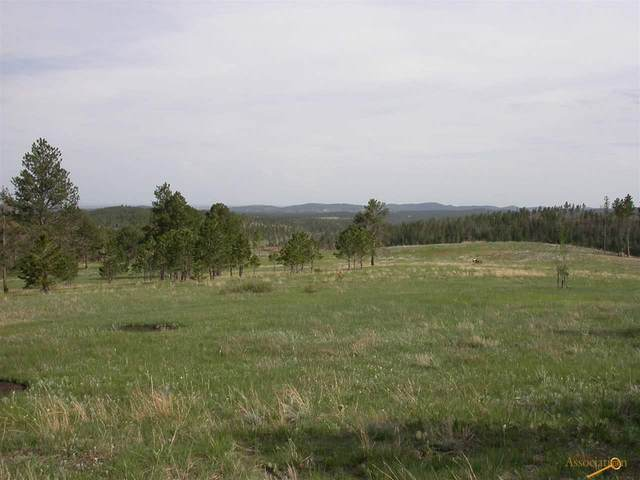 tbd Rushmore Ranch Rd, Keystone, SD 57751 (MLS #147890) :: Dupont Real Estate Inc.