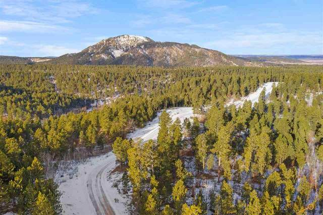 Lot 4 Tanager Ct, Spearfish, SD 57783 (MLS #147960) :: VIP Properties