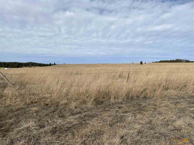 Lot 8 Block 6 Custer Highlands, Edgemont, SD 57730 (MLS #148047) :: Black Hills SD Realty