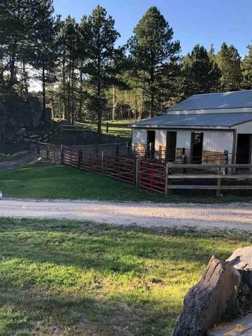 Hwy 16, Custer, SD 57730 (MLS #148225) :: VIP Properties