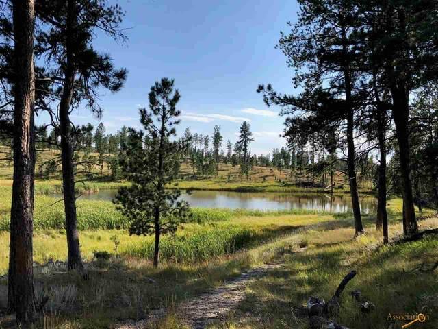 TBD Willow Creek, Custer, SD 57730 (MLS #148328) :: VIP Properties