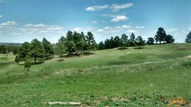 Lot 12 TBD Other, Piedmont, SD 57769 (MLS #148675) :: Dupont Real Estate Inc.