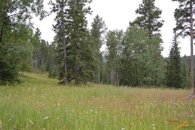 Lot 38 Other, Lead, SD 57754 (MLS #148686) :: VIP Properties