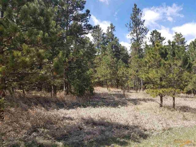 Lot 15 Wolf Ln, Pringle, SD 57773 (MLS #149102) :: Dupont Real Estate Inc.