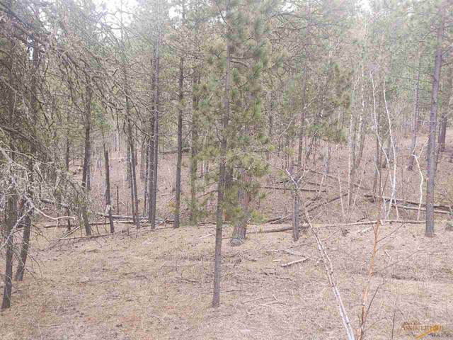 tbd Alpine Dr, Rapid City, SD 57702 (MLS #149264) :: Dupont Real Estate Inc.