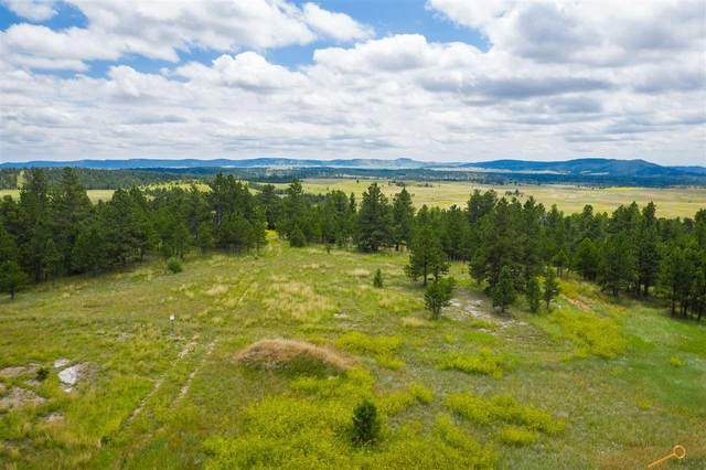 Pronghorn 4 Stage Stop Rd, Custer, SD 57730 (MLS #149315) :: VIP Properties