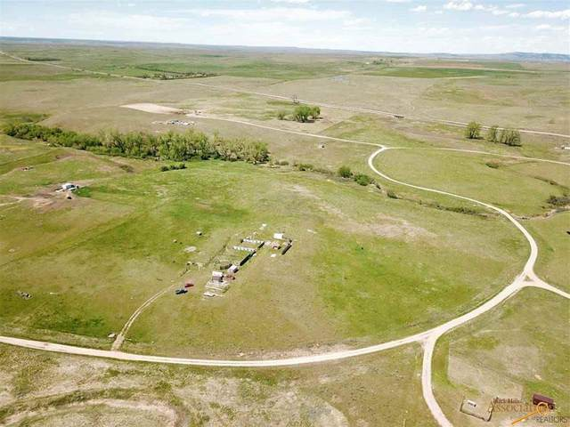 Lots 41 & 43 Gobbler Ln, Smithwick, SD 57782 (MLS #149566) :: Christians Team Real Estate, Inc.