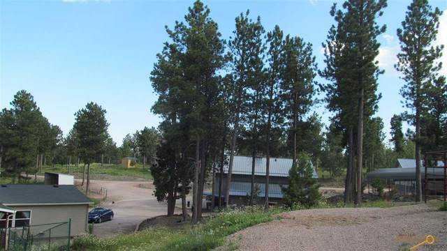 23607 & 23619 Tigerville Rd, Hill City, SD 57745 (MLS #149578) :: Christians Team Real Estate, Inc.
