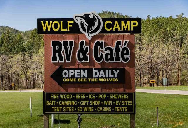 24600 Iron Mountain Rd, Keystone, SD 57751 (MLS #149644) :: Heidrich Real Estate Team