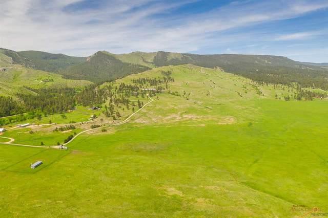 TBD Little Elk Creek Crossing, Piedmont, SD 57769 (MLS #149698) :: Christians Team Real Estate, Inc.