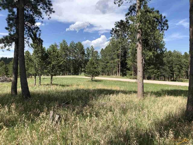 Tract Wildrose Wind Song Rd, Custer, SD 57730 (MLS #149723) :: Heidrich Real Estate Team