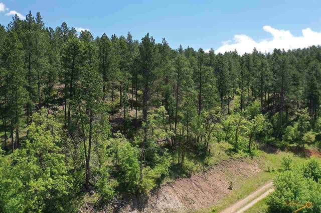 Lot 2 Block 5 Tanager Ct, Spearfish, SD 57783 (MLS #149756) :: Dupont Real Estate Inc.
