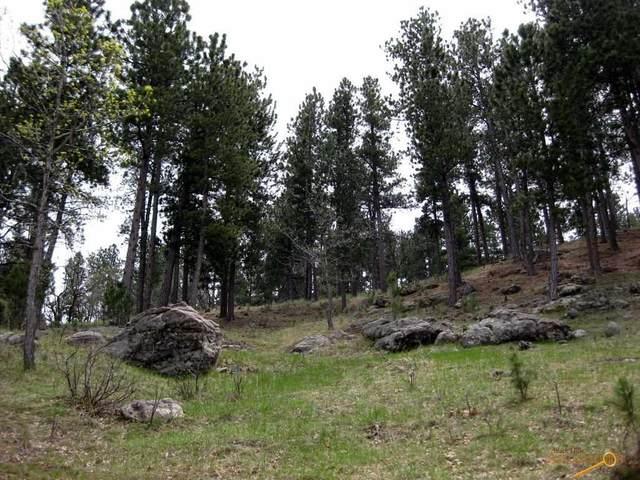 TBD Frontier Loop, Whitewood, SD 57793 (MLS #149986) :: Heidrich Real Estate Team