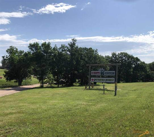 8220 Elk Creek Rd, Piedmont, SD 57769 (MLS #150203) :: Dupont Real Estate Inc.