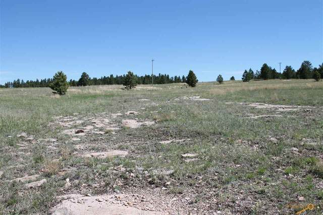 TBD Frontage Rd, Edgemont, SD 57735 (MLS #150240) :: Black Hills SD Realty