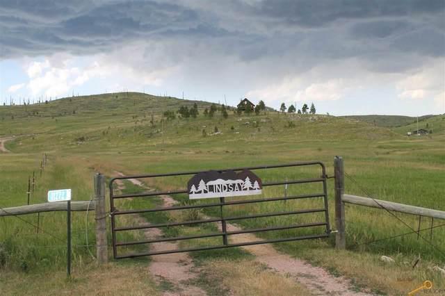 11272 Custer Limestone Rd, Custer, SD 57730 (MLS #150333) :: VIP Properties