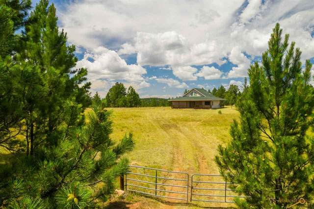 11803 W Argyle Rd, Custer, SD 57730 (MLS #150493) :: Heidrich Real Estate Team