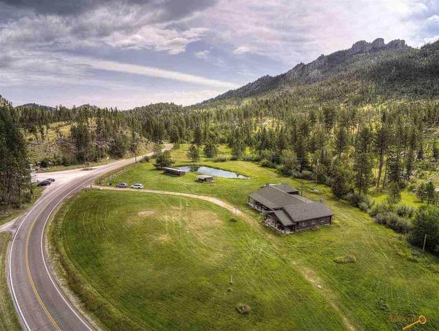 24392 Hwy 87, Custer, SD 57730 (MLS #150659) :: Christians Team Real Estate, Inc.