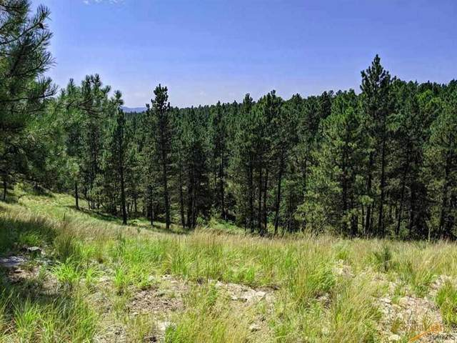 TBD Gobbler Rd, Hot Springs, SD 57747 (MLS #150770) :: Christians Team Real Estate, Inc.