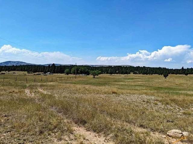 Lot 8 Moonlight Dr, Edgemont, SD 57735 (MLS #150775) :: Christians Team Real Estate, Inc.