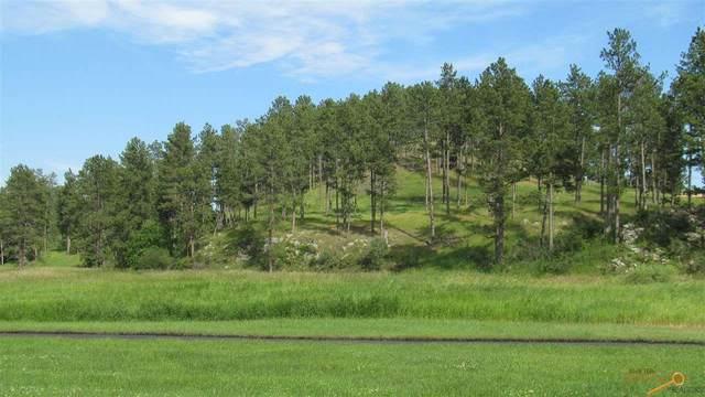 709 & 713 Major Lake Dr, Hill City, SD 57745 (MLS #150869) :: Heidrich Real Estate Team