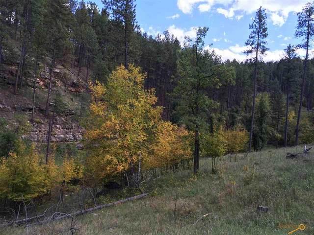 TBD Gold Creek Pl, Rapid City, SD 57702 (MLS #151093) :: Dupont Real Estate Inc.
