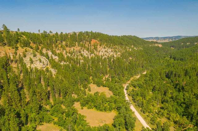 20043 Higgins Gulch Rd, Spearfish, SD 57783 (MLS #151153) :: Heidrich Real Estate Team
