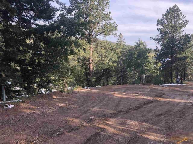 11030 Eagle Trail, Lead, SD 57754 (MLS #151170) :: Black Hills SD Realty