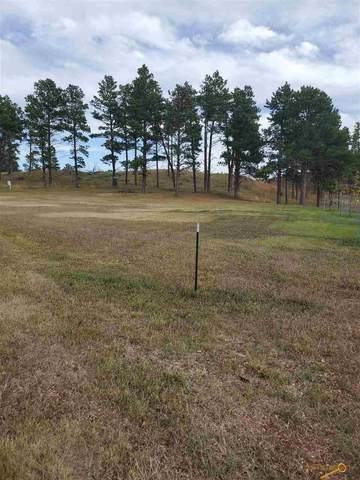 TBD George Pl, Keystone, SD 57751 (MLS #151173) :: Dupont Real Estate Inc.