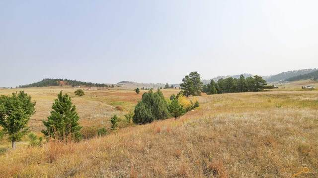 27109 Pine Tree Dr, Hot Springs, SD 57747 (MLS #151355) :: Heidrich Real Estate Team