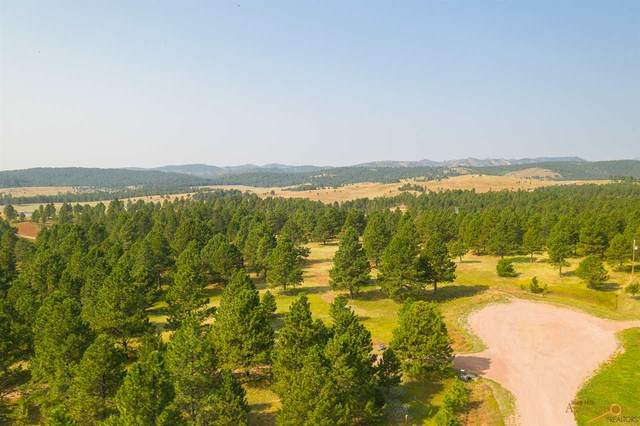 24707 Timber Ridge Rd, Hermosa, SD 57744 (MLS #151360) :: Black Hills SD Realty