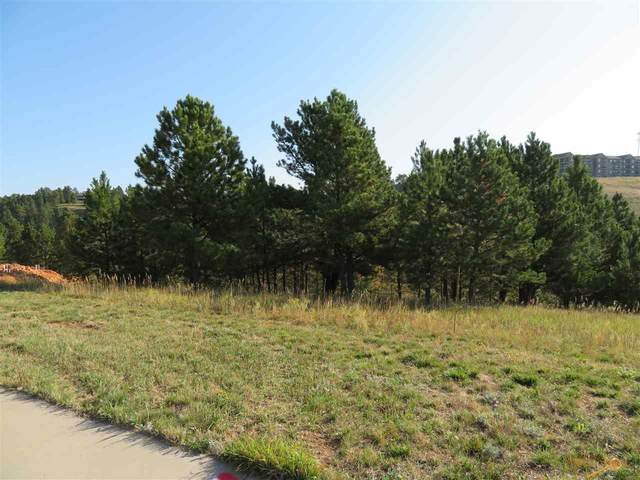 2322 Golden Eagle Dr, Rapid City, SD 57702 (MLS #151478) :: Christians Team Real Estate, Inc.